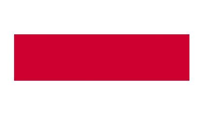 Red Lions Reinach, Sponsoren, Fischer Reinach