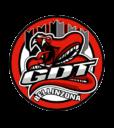 Red Lions Reinach, GDT Bellinzona